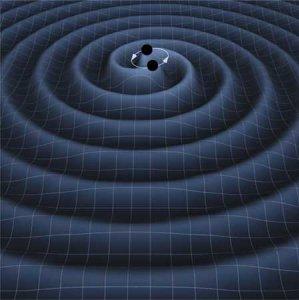दो श्याम वीवरों द्वारा एक दूसरे की परिक्रमा से उत्पन्न गुरुत्विय तरंगे