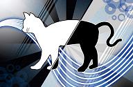 श्रोडीन्गर की बिल्ली : जीवित या मृत