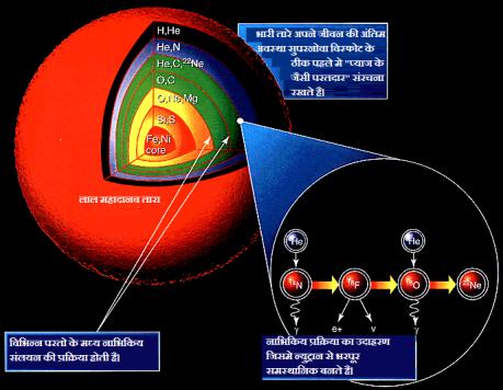 तारों मे नाभिकिय संलयन द्वारा हल्के तत्वों का निर्माण