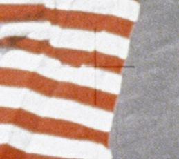 ध्वज का आवर्धित चित्र जिसमे सफ़ेद भाग पर क्रास हेयर दब गया है।